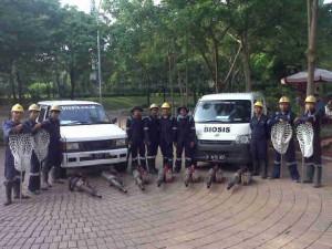 biosis tim pengasapan indonesia