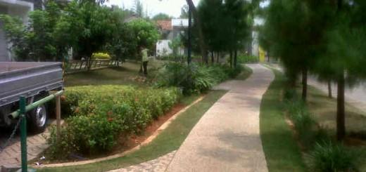 Landscaping di Grand Galaxy City Bekasi by Biosis (3)