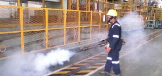 Fogging_biosis_HCMI_MM2100