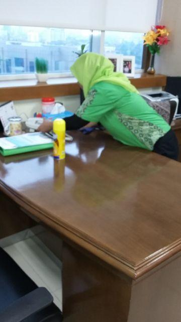 Divisi Housekeeping  biosis 12